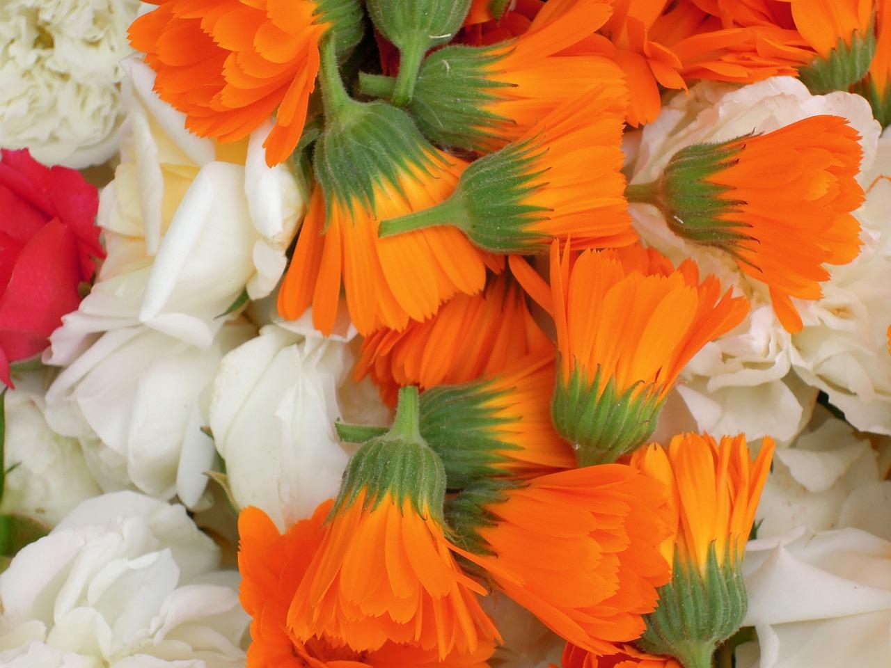 bouquet d'autunno garofani